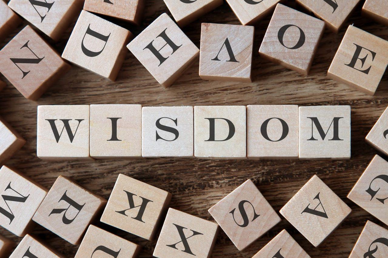 wisdom courtesy of schatzyshutterstockcom_256157260
