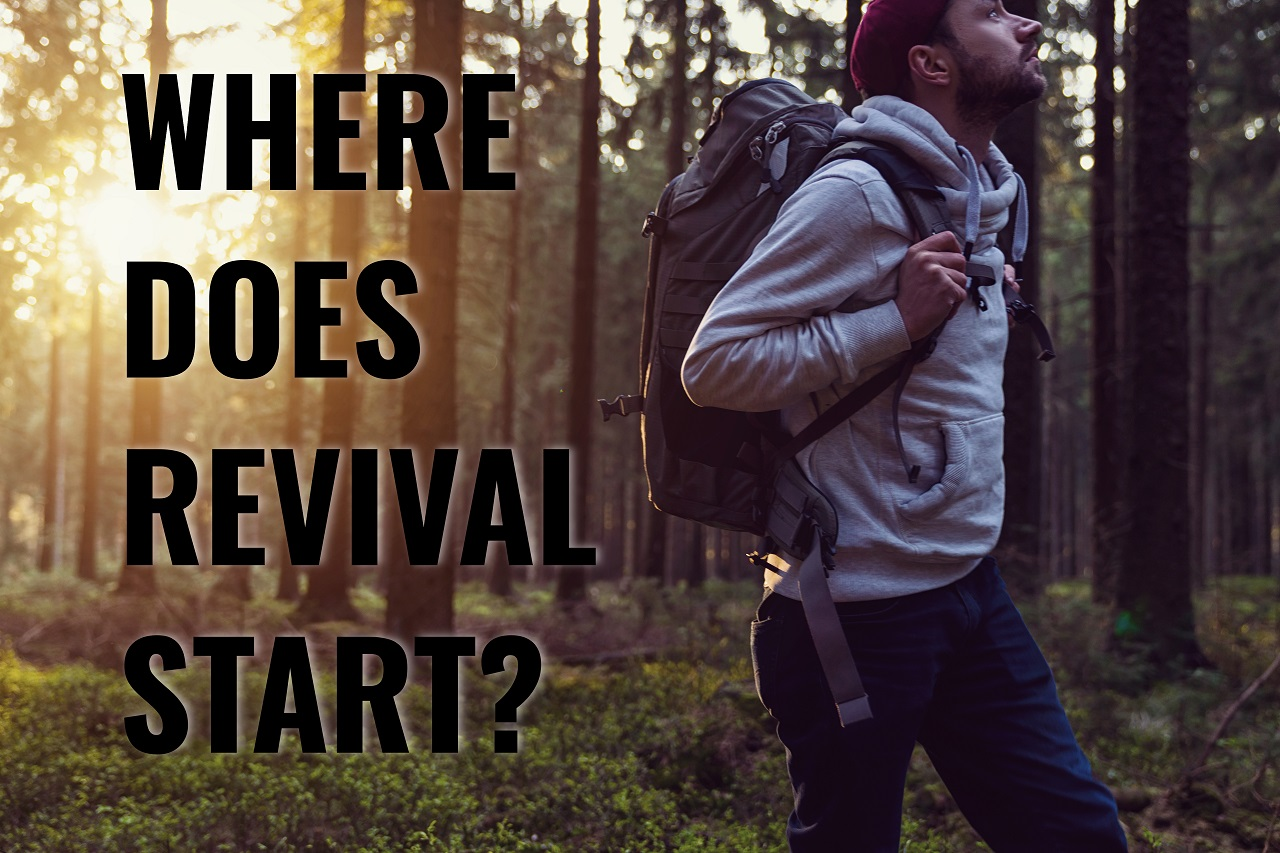 Torch Where does Revival Start2
